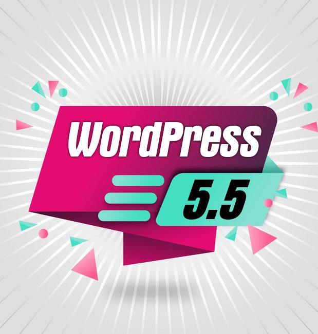 ¿Qué trae de nuevo WordPress 5.5.?